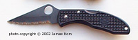 photo of black-bladed Spyderco Delica folding knife title=